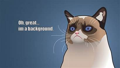Meme Backgrounds Background Pixelstalk