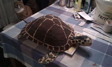 surprise schildpad  sinterklaas pinterest