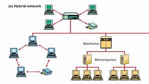 Knowledge Hub  Computer Network Typologies