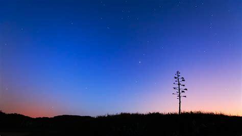 夜空-星空高清壁纸-1920x1080下载