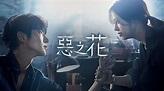 惡之花(邪惡之花)第8集|線上看|韓劇|LINE TV-精彩隨看