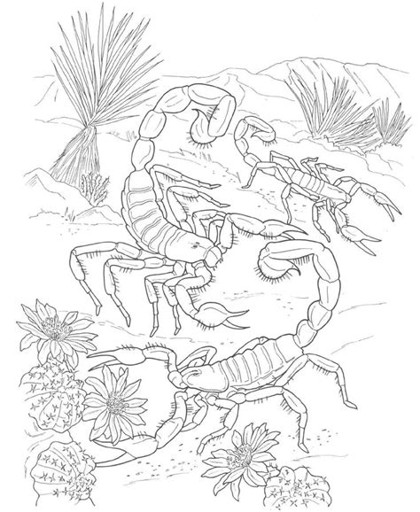 coloring pages for adults realistic animals Google