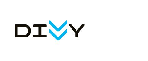 brand new new name logo and identity for divvy by ideo and firebelly