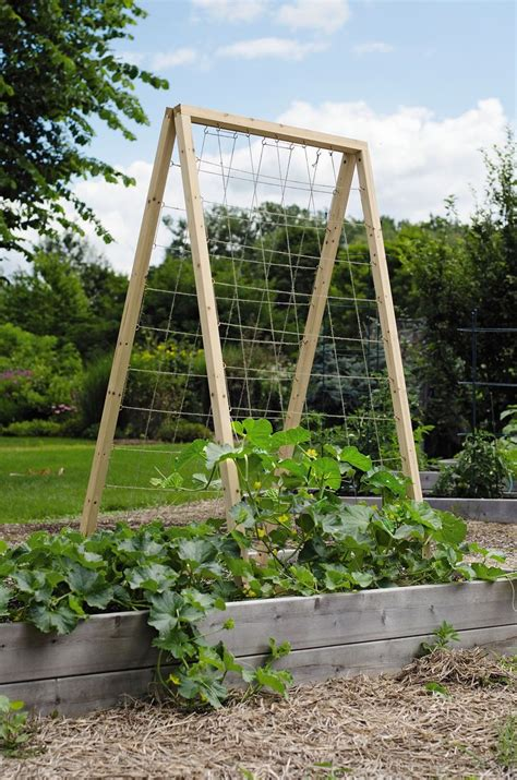 A Frame Garden Trellis by Twine Vegetable Garden Trellis Quot Frame Is Made From 1 3 8
