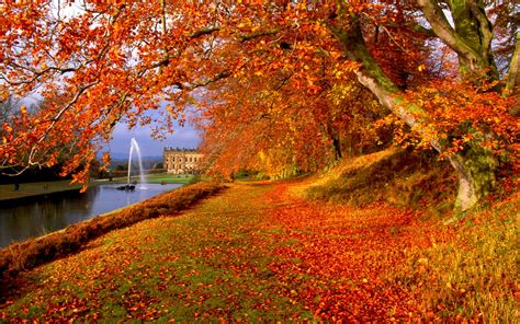 Desktop High Quality Fall Backgrounds by Autumn Wallpapers High Quality Free