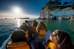 new zealand honeymoon package 10 day north island With new zealand honeymoon packages