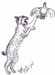 Sketches Of Deer Art By Jeane Nevarez Wild Cats