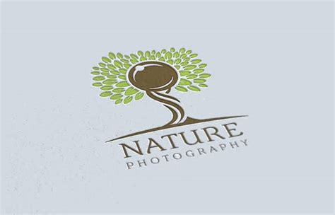 photography logo designs design trends premium psd