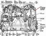 93 Crown Victoria Engine Diagram