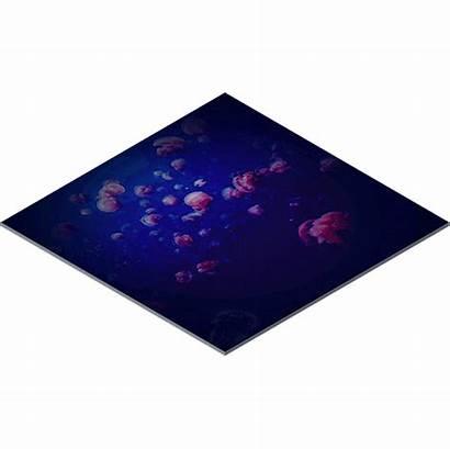 Led Floor Interactive Outdoor Indoor Screen Jellyfish