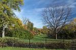 Autumn in Ann Arbor - Hecktic Travels