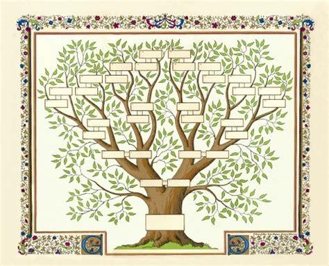 comment commencer son arbre g 233 n 233 alogique