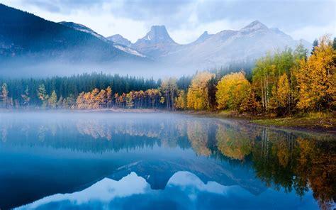 树木丛林精美壁纸_好看的树木景色_风景壁纸_
