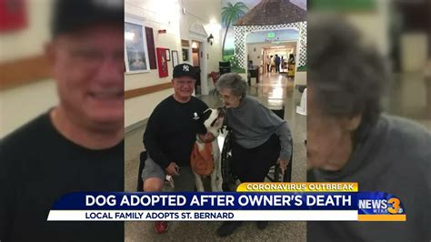 Virginia Beach Couple Adopts Dog After Owner Dies From