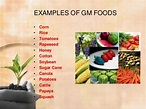 Genetically modified food and its consequences on human ...