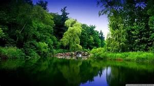 Natur Hintergrundbilder kostenlos HD