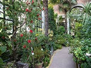 Mediterraner Garten Winterhart : exotische pflanzen winterhart pflanzen f r garten winterhart kreative ideen f r exotische ~ Markanthonyermac.com Haus und Dekorationen