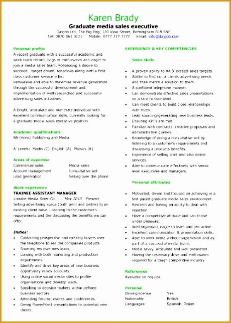 Chronological Resume Work Experience by 8 An Effective Chronological Resume Sle Free Sles