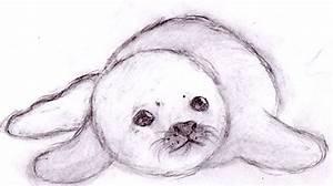Baby Seal by leniinha on DeviantArt