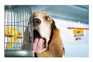Scrapbook: Los mejores anuncios publicitarios impresos