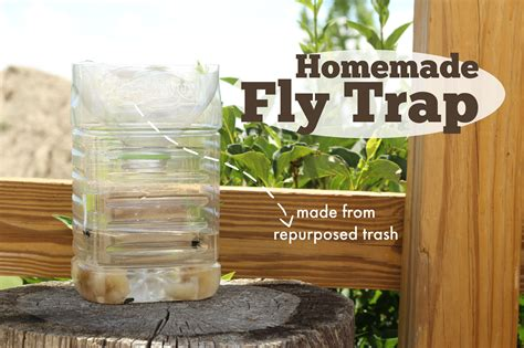 How To Trap House Flies by Fly Trap The Prairie Homestead