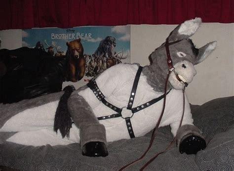 donkey person wikifur  furry encyclopedia