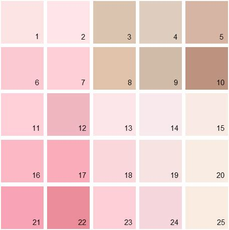 benjamin paint colors pink palette 05 house