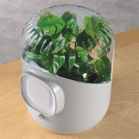 best house plants surprising inventions that help our environment care2