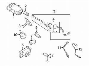 Hyundai Tucson Filter  U0026 Canister Valve Assembly  Sulev