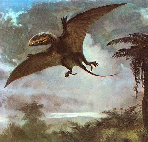 Giochi Di Dinosauri Volanti In The Time Of Chasmosaurs Vintage Dinosaur
