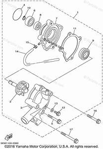 Yamaha Atv 2002 Oem Parts Diagram For Water Pump