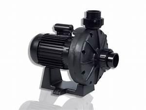 Surpresseur Pas Cher : surpresseur hayward booster pump 1 0cv monophas achat ~ Edinachiropracticcenter.com Idées de Décoration