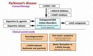Improving the Treatment of Parkinson's Disease: A Novel ...