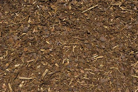 ground bark mulch harvey park plants plant research ground cover