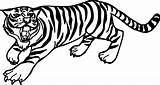 Tiger Easy Drawing Coloring Printable Pages Getdrawings Patterns sketch template
