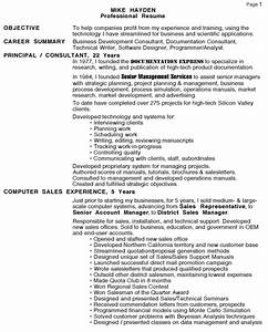 personal resume page 1 management consulting freelance With business plan writer resume