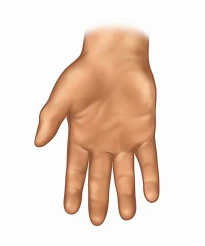 Hand Cuhk Aic Web8 Hk Edu Jooinn