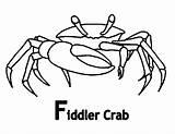 Crab Coloring Fiddler Cartoon Pages Sheet Grab Printable Drawings Getcolorings Button Using Getdrawings Feel Well sketch template