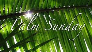 happy palm sunday nyfifth