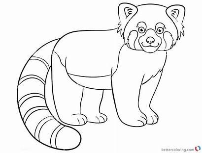 Panda Coloring Pages Lineart Printable Colorings Getdrawings