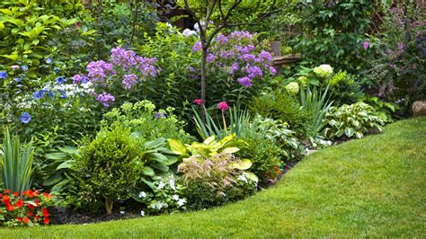 Perennial Garden Design - 6 landscaping mistakes that will destroy your yard