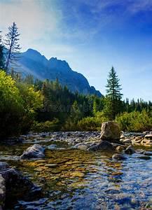 Mountain, River, In, High, Tatras, In, Slovakia, Stock, Image