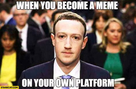 Zuckerberg Memes - mark zuckerberg when you become a meme on your own platform starecat com