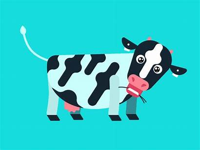 Cow Animation Dribbble Cray Character Icon Lapresse
