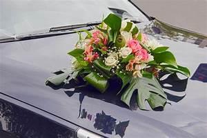Autoschmuck Hochzeit Günstig : 140 best autoschmuck zur hochzeit images on pinterest ~ Jslefanu.com Haus und Dekorationen