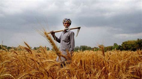 farmers sad bjp activists hold protests  punjab