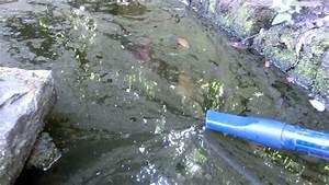 Algen Im Teich Entfernen : algen im teich entfernen teichsauger blaualgen youtube ~ Orissabook.com Haus und Dekorationen