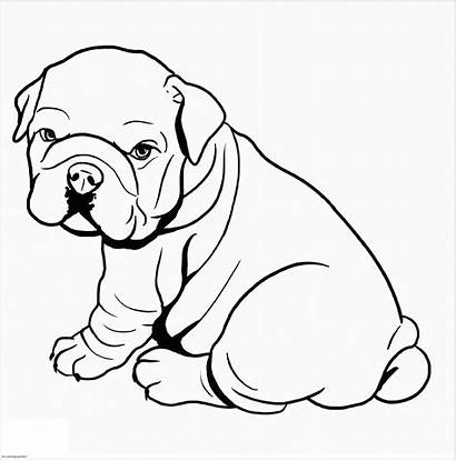 Coloring Dog Pitbull Bull Puppy Lovers Printable