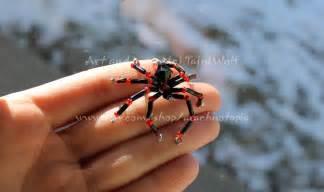 Red Black Widow Spider