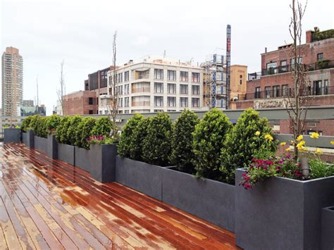 ues rooftop terrace roof garden deck container plants pots boxwoods contemporary deck